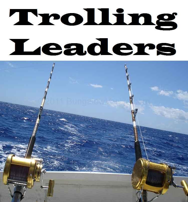 Trolling Leaders