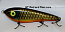 "Smuttly Dog Baits Lures 7"" Drop Belly, Color; Orange Belly Carp"