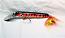 AHL Rock Diver Hot Tiger