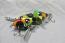 Mini Baby Spitzer 5 Fire Leopard